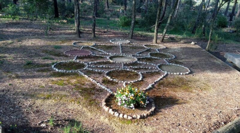 Meditació equinocci primavera 21 de març de 2020